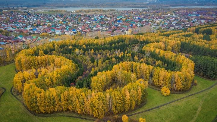 Новосибирский фотограф показал Краснообск с высоты птичьего полёта. Таким красивым его не видели