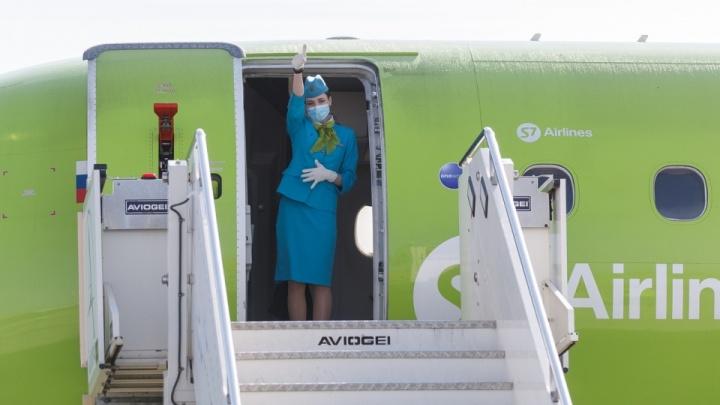 В Кургане обсуждают возможность открытия авиарейсов до Новосибирска и Санкт-Петербурга