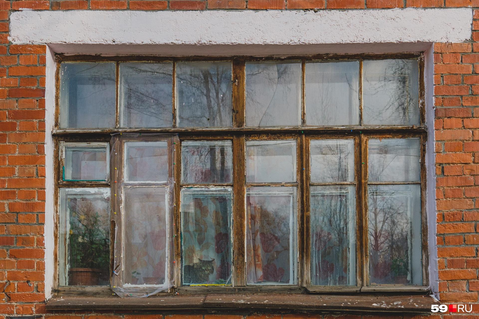 Сохранились и старые рамы, но они в плохом состоянии. Их тоже скоро заменят