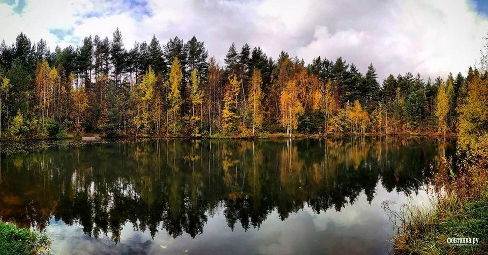 Даже в самом конце октября пригородные леса и парки радовали яркими красками