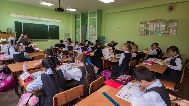 Власти Новосибирска дали родителям возможность переводить детей на дистанционку по желанию