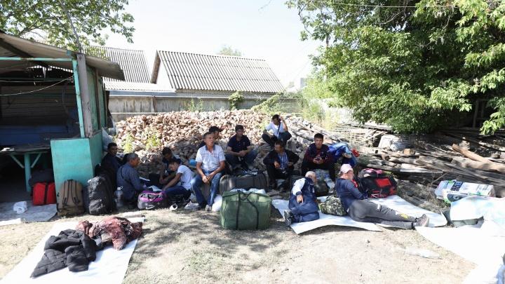 Вторая волна: как выглядит новый стихийный лагерь узбеков в Каменске-Шахтинском. Фоторепортаж 161.RU