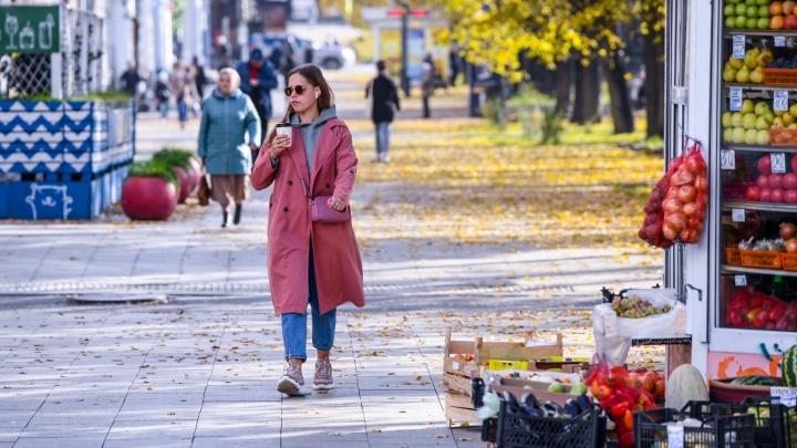 Всё ещё в плюсе: прогноз погоды в Екатеринбурге на неделю