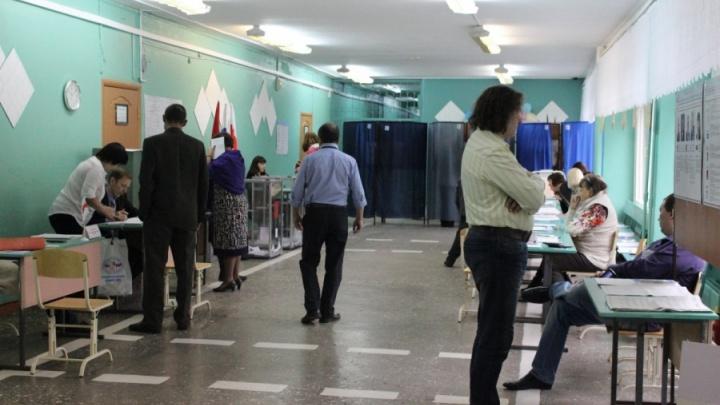 В Омске в воскресенье пройдут выборы. Кого и где будут выбирать?