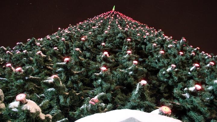 Только елка и горячий чай: в Екатеринбурге не будут строить ледовый городок на главной площади
