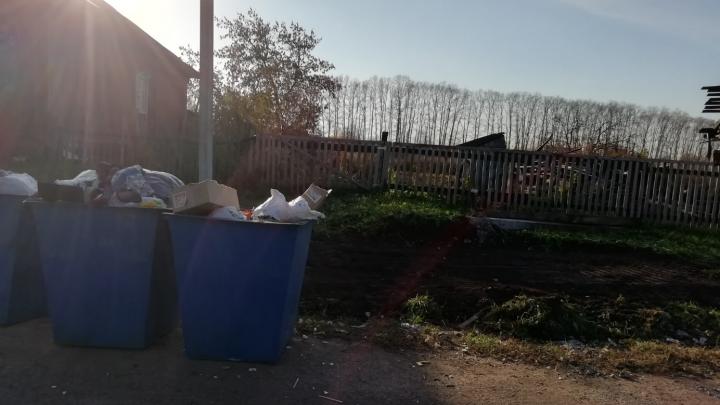 «Наше мнение ничего не значит»: жительница Башкирии пожаловалась на мусор, разлетающийся по деревне