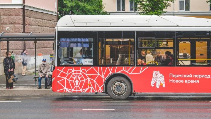 В автобусах и трамваях Перми пройдут рейды: будут проверять, в масках ли пассажиры
