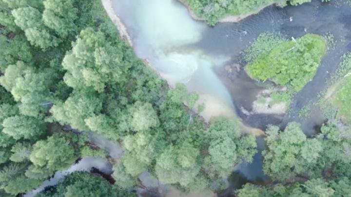Росприроднадзор организовал масштабную проверку из-за загрязнения рек на Урале