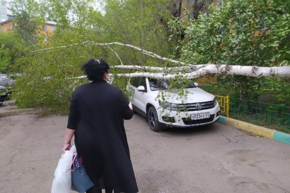 На прошлой неделе по Красноярску прошел сильный ветер