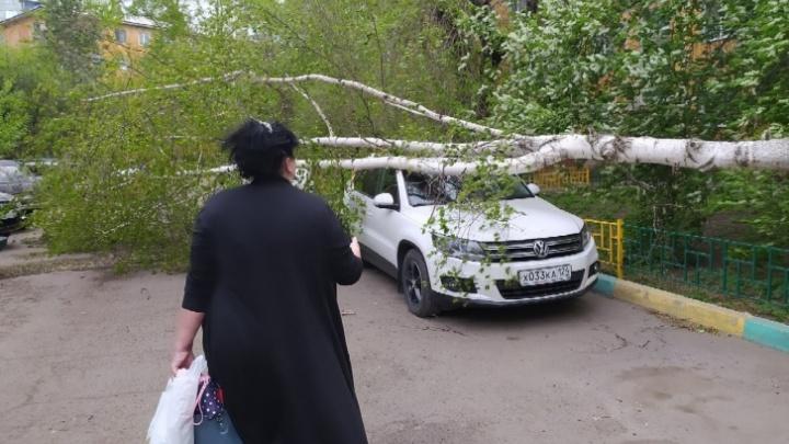 На Красноярск надвигается штормовой ветер и гроза