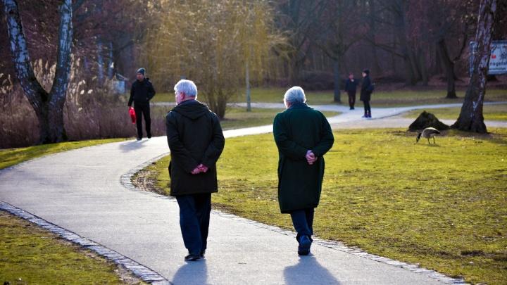 Пансионат или Центр Активного Долголетия: что предпочитают сегодня пожилые?