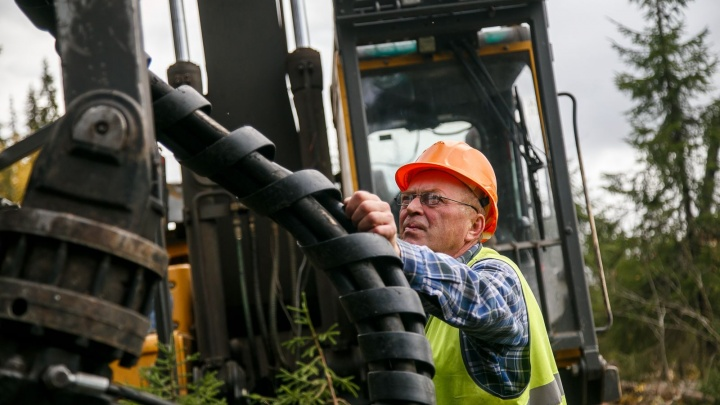 Леспромхозы «Титан» заготовили более 1,7 миллиона кубометров древесины с начала года