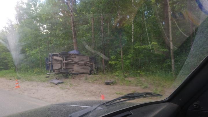 «Машина обняла ствол»: в Самарской области ВАЗ вылетел с трассы в дерево