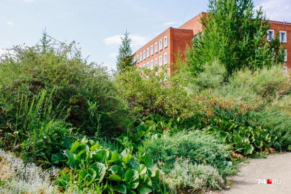 Сейчас в ботанический сад можно попасть с разных входов