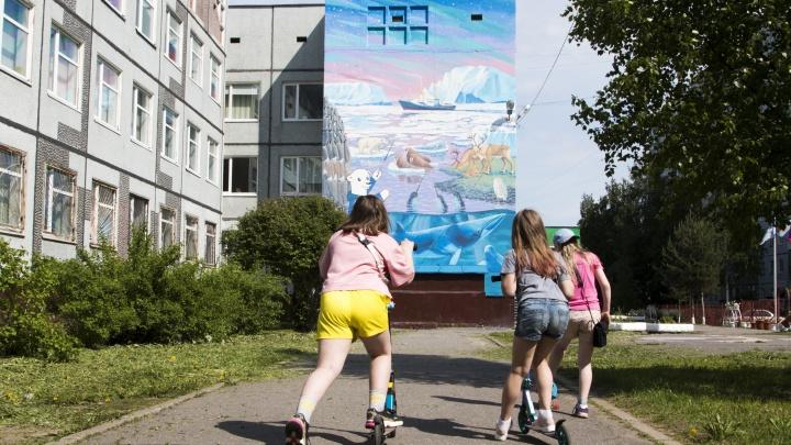 Под палящим солнцем рисовали льды: в Архангельске на стене школы изобразили обитателей Арктики