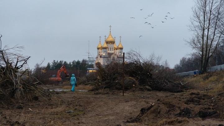 С пляжа Архангельска выкорчевали все кусты. На этом месте будет зона отдыха