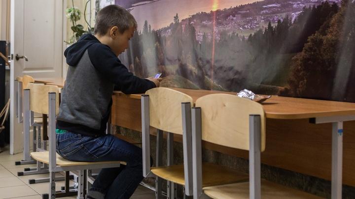 Можно вызвать к доске в интернете: учитель из Новосибирска разработал виртуальную школу на 1000 учеников