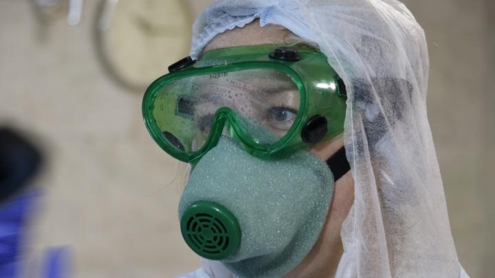 Оперштаб России подтвердил еще 256 случаев COVID-19 в Архангельской области