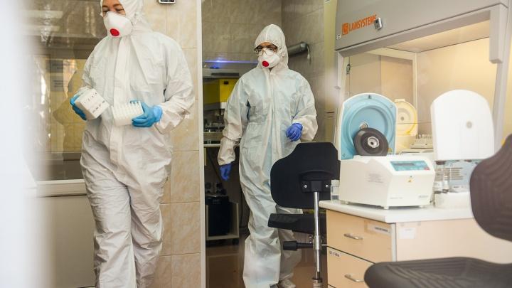 В Самаре тесты на COVID-19 в частных лабораториях начнут брать с 10 апреля