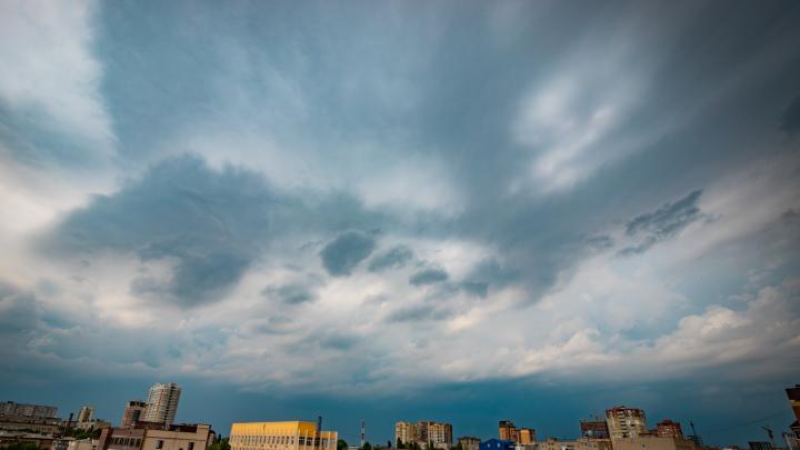 Ветер в Ростове усилится до 18 м/с