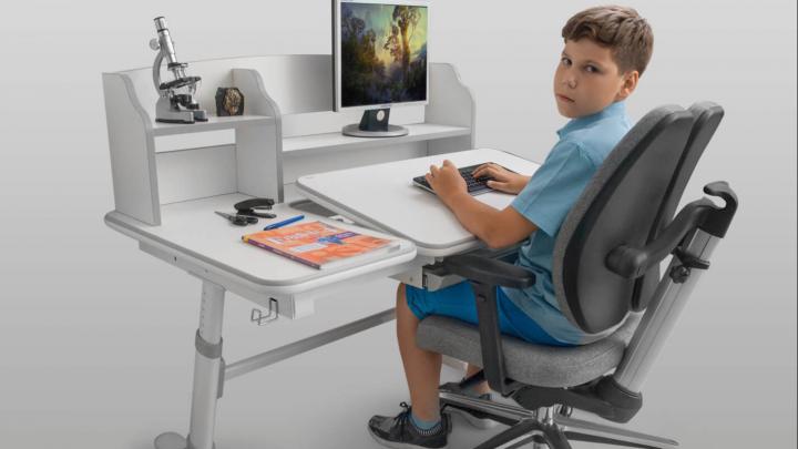 Сколько стоит специальная мебель для школьников: парта и стул могут «расти»