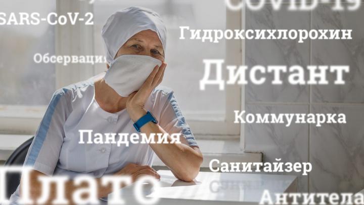 Азбука карантина: смотрите, чем пополнился наш словарь из-за коронавируса