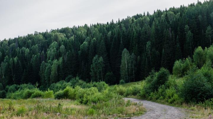 МЧС предупреждает жителей Прикамья о пожарной опасности