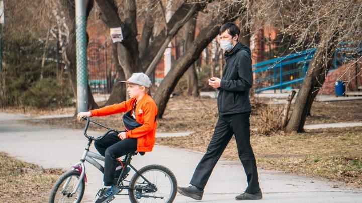 В Омской области запустили онлайн-сервис для оформления пособия на детей от 3 до 7 лет