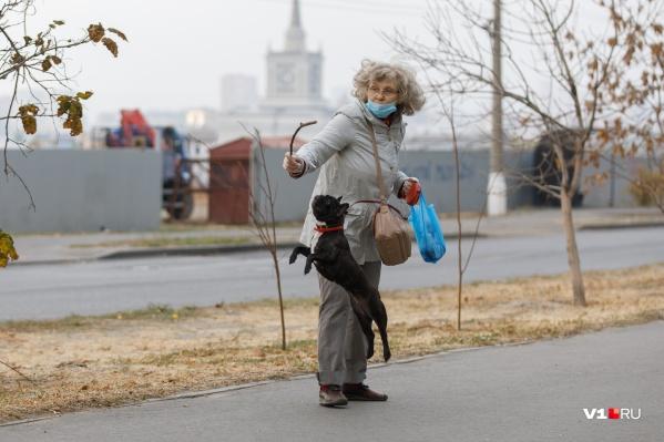 Прекрасные дни для прогулок на свежем воздухе. Не забывайте о масках в общественных местах