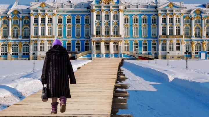 Александр Цыбульский: «В Архангельске арктической фишки сегодня нет»