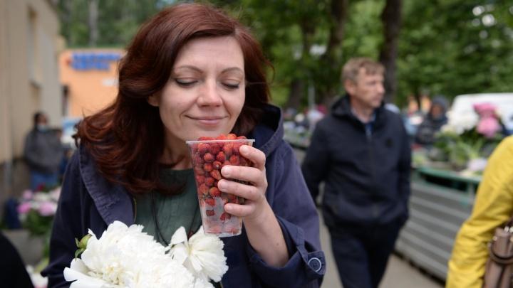 «Созрела на две недели раньше»: где в Екатеринбурге бабушки продают местную ягоду и миллион пионов