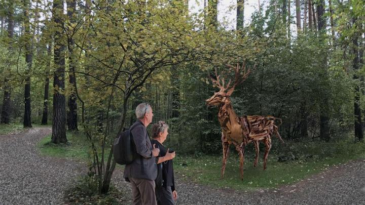 Все как в Европе: екатеринбуржцам показали обновленный Юго-Западный лесопарк