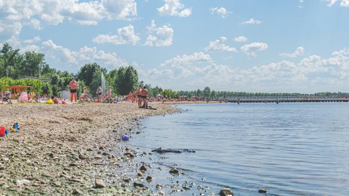 МЧС нашли мужчин, которые спасли мальчика, тонувшего в Прикамском пруду