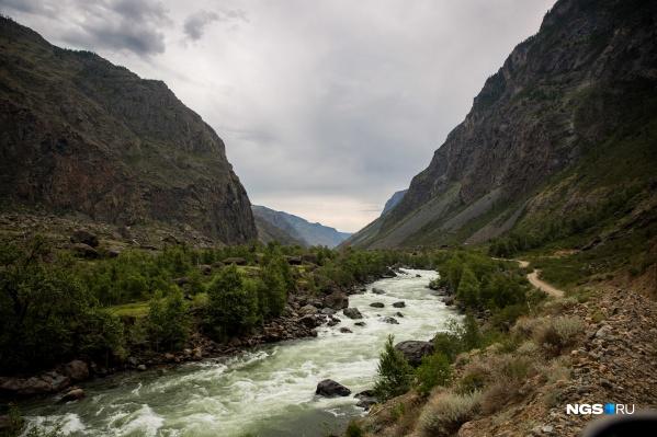 Многие новосибирцы из-за закрытых границ надеялись отдохнуть хотя бы на Алтае<br><br>