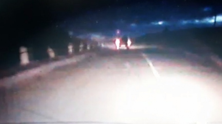 «Просила остановиться, но он лишь прибавил скорости»: женщина выпала из машины во время погони с полицией