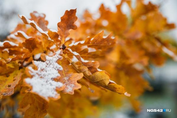 Утром 8 сентября весь город был покрыт снегом