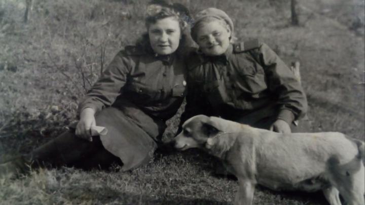 Фронтовой инстаграм: как собака Щука двух разведчиц спасла