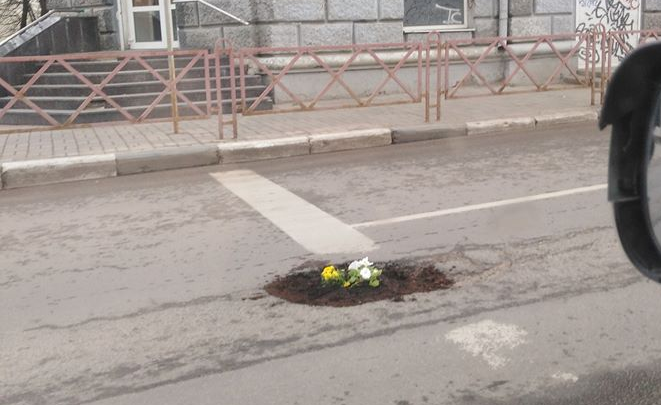 В Ярославле в дорожной яме разбили клумбу: фото