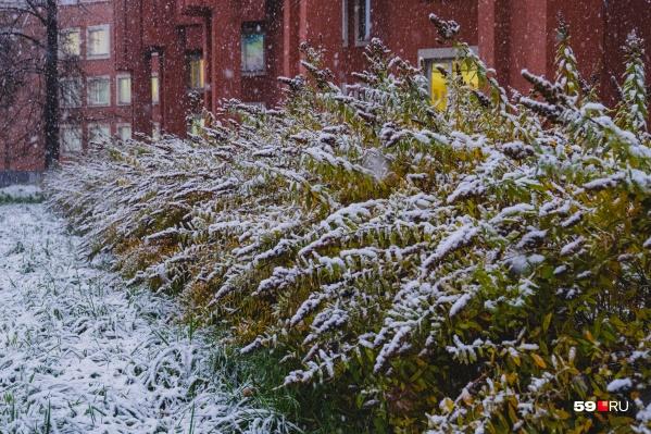 В Перми и крае синоптики предсказывают снег