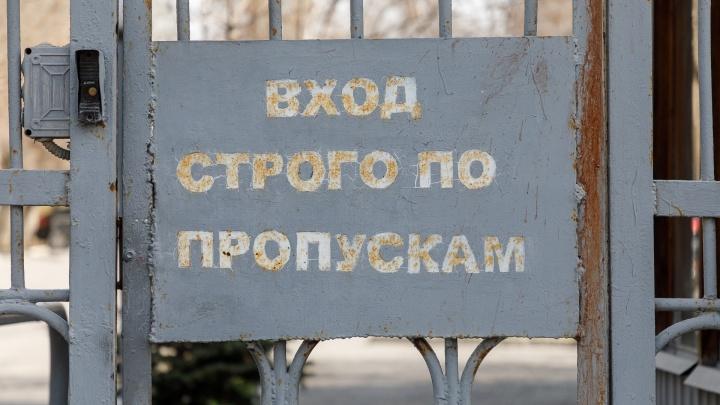 Волгоградскую область изолируют от коронавируса: главные новости сегодняшнего дня