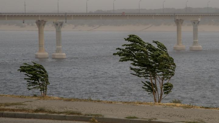 Волгоградскую область накроет сильный ветер при +16ºС