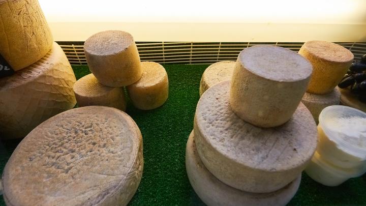«Вместо пармезана»: в Самарской области открылось производство сыров