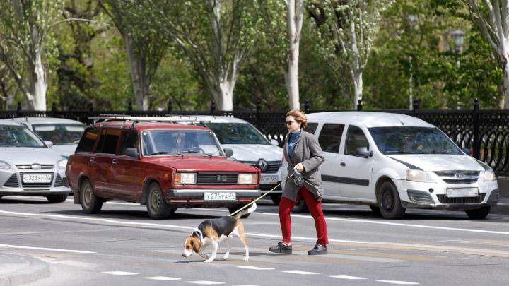 Похолодание и сильный ветер спрогнозировали синоптики в Волгограде