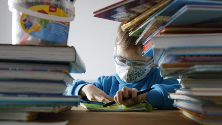 35 школ в Ростовской области перевели учеников на дистант