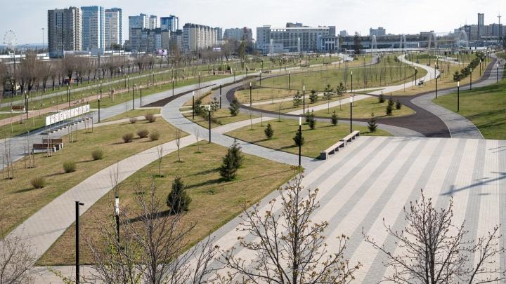 «Это какой-то маразм, а не самоизоляция»: в Волгоградской области расширят список работающих фирм
