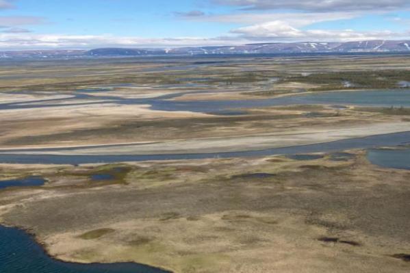 Место впадения системы рек в озеро Пясино. Экологи доказали, что солярка попала и в него тоже