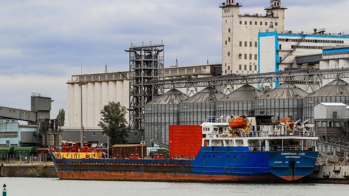 Главу «Южного агротерминала» подозревают в незаконном заработке 97 миллионов рублей