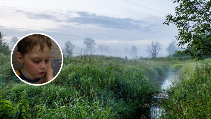 Один на болотах: в Ярославской области нашли 9-летнего Сашу Волкова