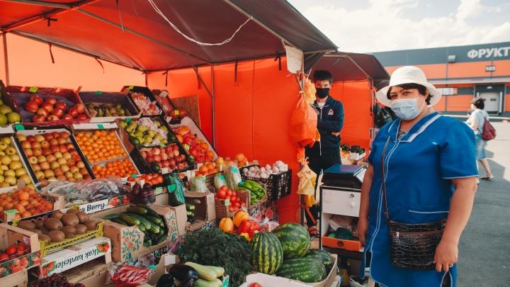 Клубнично-черешневый обзор: почем на тюменских рынках ягоды и откуда их везут
