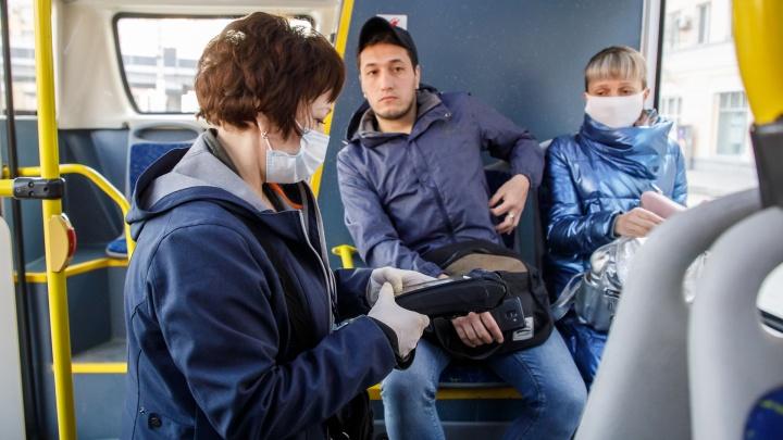 К автобусам добавят троллейбус: как с завтрашнего дня будет работать общественный транспорт Волгограда